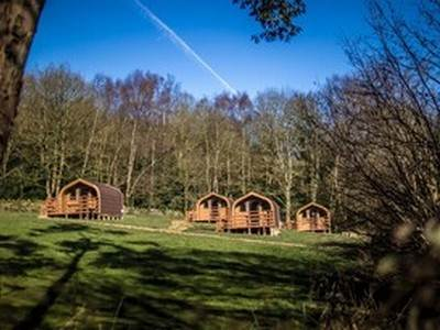 Pet Friendly Camping Cabin at Holme Valley