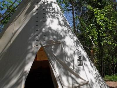 Buzzard Tipi at Woodland Tipi and Yurts