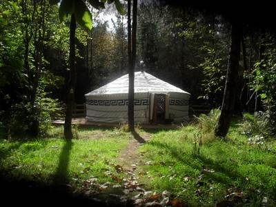 Foxglove Yurt at Woodlands Farm
