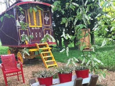 Wild Billy's Wagon at The Meadow