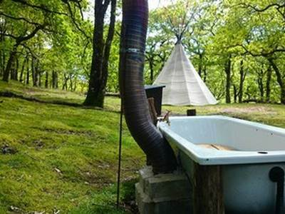 The Forest Yurt at Eco Retreats