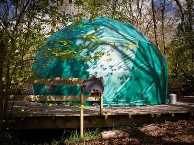 Holly Dome Glamping at Cosy Under Canvas