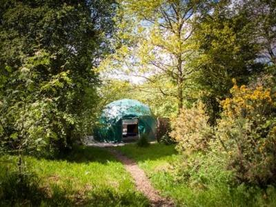 Ash Dome Glamping at Cosy Under Canvas