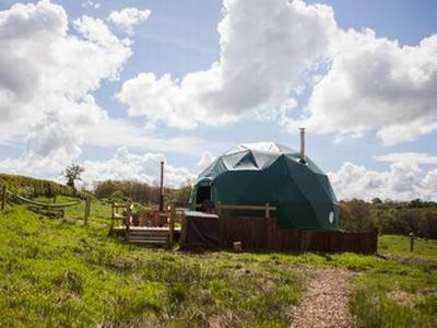 Beech Dome Glamping at Cosy Under Canvas