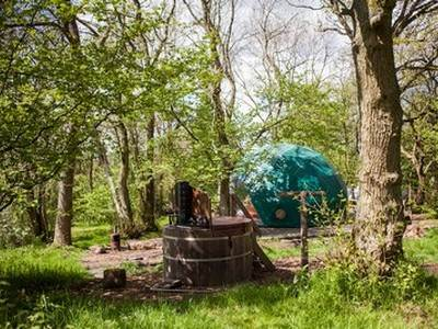 Oak Dome Glamping at Cosy Under Canvas